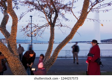 Geneva / Switzerland - november 31, 2008 : during the month of December the trees receive luminous ornaments created by artists
