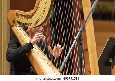 Pair Symphony Harps Stock Photo (Edit Now) 685346950 - Shutterstock