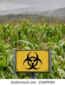 genfood corn sign