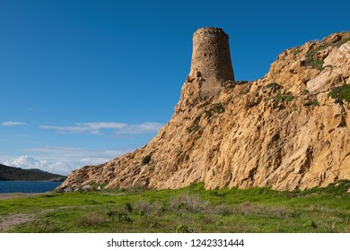 Genoese tower of Pietra in L'Île-Rousse, Corsica, France