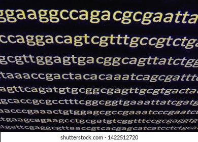 Genome sequencing. Decoding genes, the sequence of nucleotide bases in DNA.