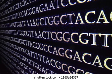 Genomic sequencing. The sequence of nucleotide bases in DNA.