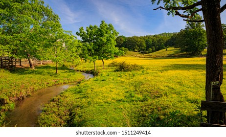 Gentle babbling brook wanders through fields of buttercups