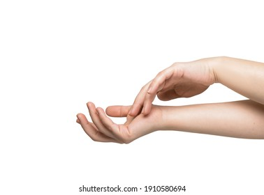 gentle female hands on a white background. High quality photo