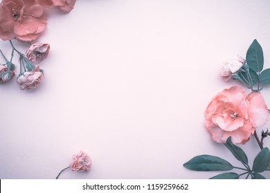 Gentle floral border, abstract natural wallpaper, baby pink roses isolated on pink background, romantic postcard for wedding day