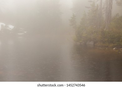 A gentle spring rain falls on subalpine lake which is engulfed in a thick fog with little visibility obscuring everything in sight.