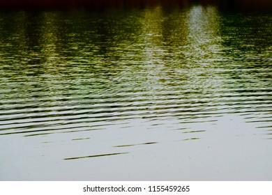 Gentle water waves of a lake isolated unique blurry photo
