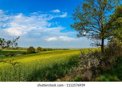 "Gently rolling landscape in the ""Mecklenburgische Schweiz"" (""Mecklenburg Switzerland"") near the town of Moltzow"
