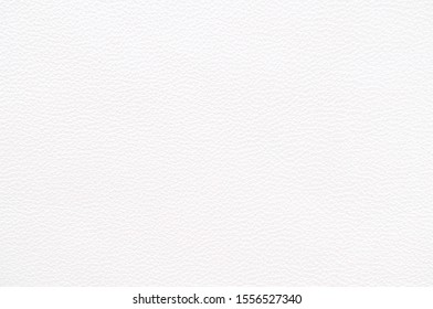 Genuine Leather. White leather texture. White background.