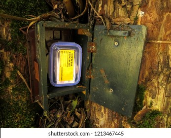 Geocaching in the nature, cache in an opened hideaway