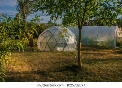 geodesic dome for vegetables