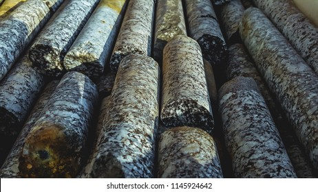 Geological core samples
