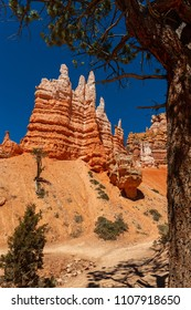Geological Formations in Bryce Canyon National Park. Hoodoos (odd-shaped pillars of rock left standing from the forces of erosion) here in Bryce are the largest collection of hoodoos in the world.