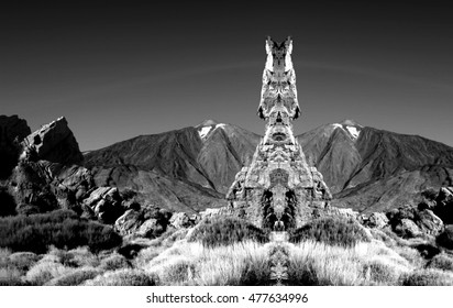 geometric composition of Las Canadas del Teide, Los Roques of García,Teide volcano,are located in an elevated position overlooking the Plain of Ucanca,surprising diversity, black and white photo,spain