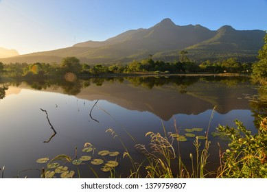 George Botanical Gardens with the Outeniqua Mountains in the background