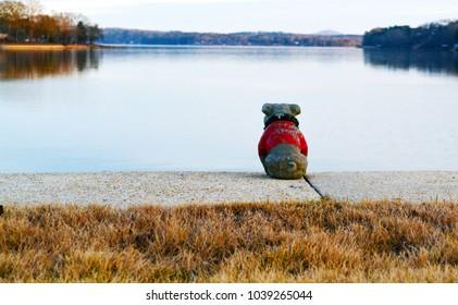 Georgia Bulldog Lake
