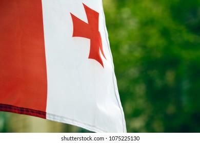 georgian flag on a green background.