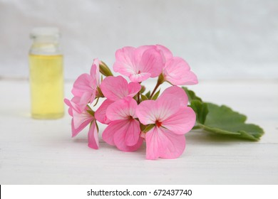 geranium essential oil (extract, infusion, remedy, tincture) container on white wooden background