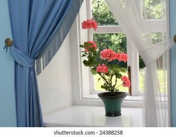 Geranium in a flowerpot on a window sill in a literary museum