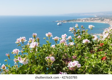 Geranium flowers with aerial view at Mediterranean Sea near Taormina at Sicily