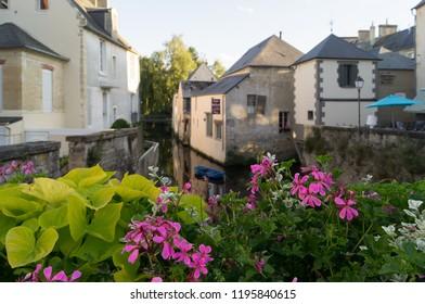 Geranium flowers on the Bayeux canal - Shutterstock ID 1195840615