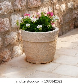 Geranium. Pot with bushes of blooming plants. Landscape design. Bushes with pink and white flowers in light ceramic flower pot.