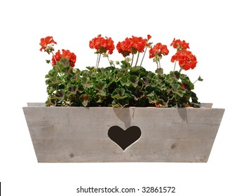 Geraniums in wooden window box with a heart cutout