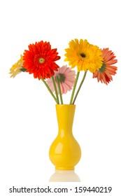 Gerbera flower on the vase, isolated white background.