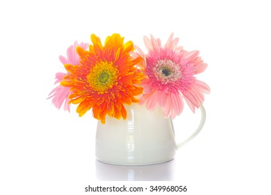 Gerbera flower on the vase, isolated white background.