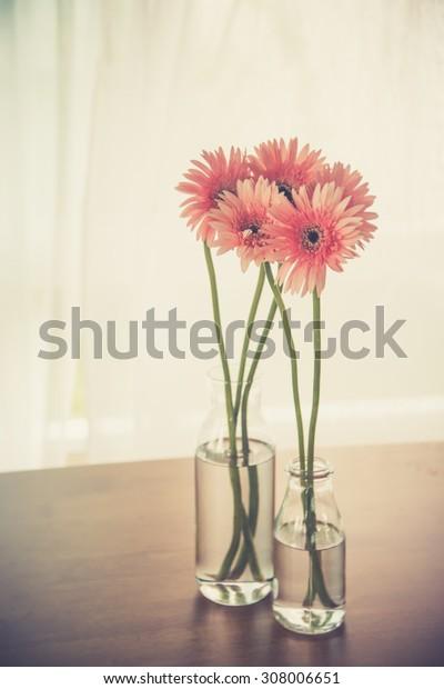 Gerbera on wooden table in room (Vintage filter effect used)