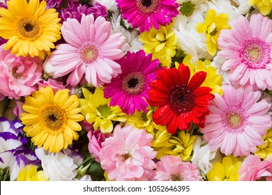 Gerbera and other colorful flowers arranged as a natural background image with white, yellow, red and pink blossoms - flat lay photography