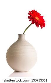 Gerbera in vase isolated on the vhite background.