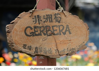 Gerbera written on wood panel signage