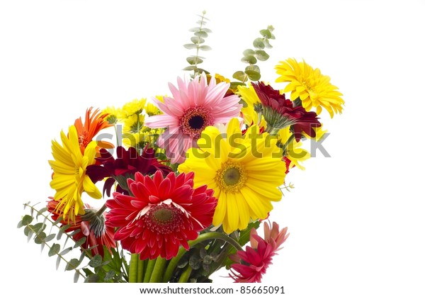 Gerberas Bouquet - Clipped Photo. Solid White Background. Colorful Gerberas and Smaller Wild Flowers.