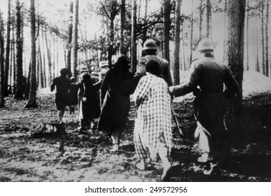 German atrocities in Poland ca. 1941. Polish women led by soldiers through woods to their execution during World War 2.