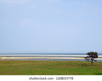 German Baltic Sea coast at Prerow