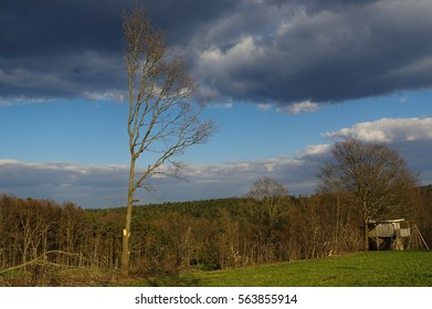 a german rural landscape with wooden house near spring forest. Black Forest in Baden Wuertemberg, Schoemberg in Germany
