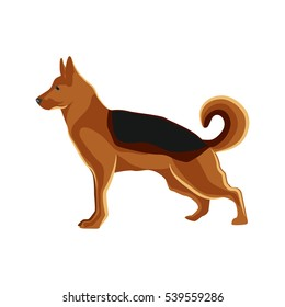 German Shepherd dog breed  illustration from show sign symbol