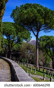 The german war cemetery of the city of montecassino