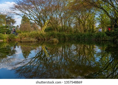 Düsseldorf, Germany - 30 March 2019: Outdoor sunny natural scenery landscape of small calm pond with mirrored reflection and waterside Japanese style Garden with spring season atmosphere in Nord park.