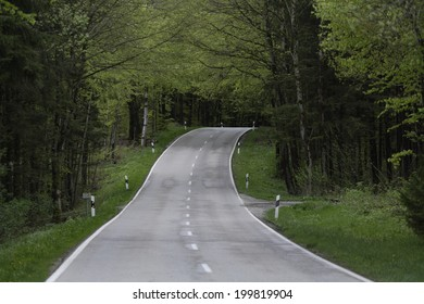 Germany, Bavaria, Schaeftlarn, treelined country road