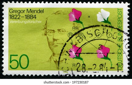 GERMANY - CIRCA 1984: A stamp printed in Germany shows Gregor Mendel, inheritance researcher, circa 1984