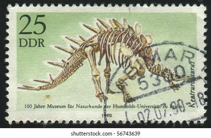 GERMANY- CIRCA 1990: stamp printed by Germany, shows  Dicraeosaurus Kentrurosaurus, circa 1990.