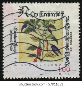 GERMANY- CIRCA 2001: stamp printed by Germany, shows Hand writing with feather, circa 2001.