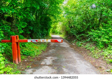 Germany, Hiking trail through green forest in springtime car-free behind barrier