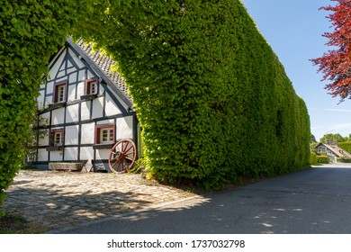 Höfen, Germany - May 17, 2020: Large hedge in front of a half-timbered house