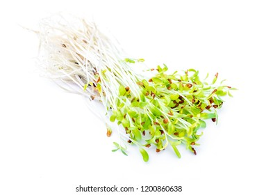 Germinated fresh and raw alfalfa sprouts. Healthy and healthy diet. Close-up isolated on white background.