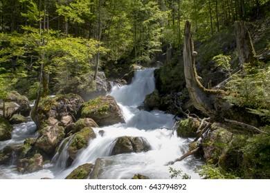 gesaeuse, ravine,cascade