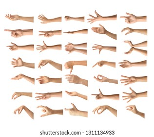 Gesturing female hands on white background
