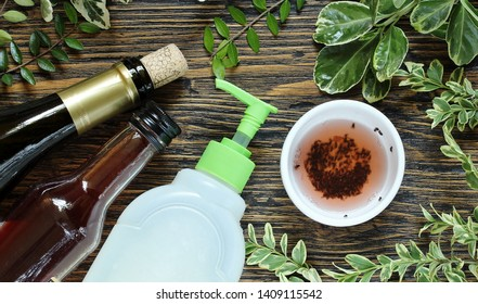 Getting Rid of Gnats in Your House. get rid of the kitchen midge. recipe home traps. add wine or wine vinegar in a bowl and a few drops of soap. set instead of clusters.